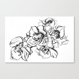 Flowers Line Drawing Canvas Print