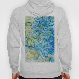 Abstract No. 244 Hoody