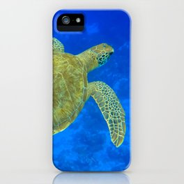 Wildlife: Green Turtle III iPhone Case