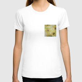 Ogallah T-shirt