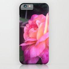 Roses in Rhode Island iPhone 6s Slim Case