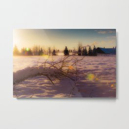 Crisp Midday winter sun and snow at Creamers Field in Alaska Metal Print