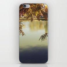 Overhanging iPhone & iPod Skin