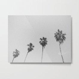 PALM TREES IV / San Francisco, California Metal Print