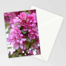 Deep pink blossom Stationery Cards