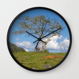 Single tree in Vinales Valley, Cuba Wall Clock