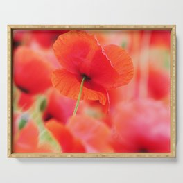 poppies square mural, in closeup Serving Tray