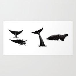 Whale flukes Art Print