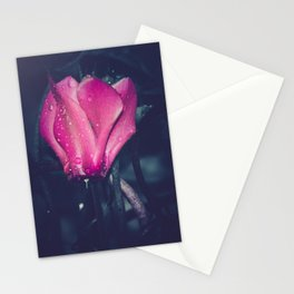 Adore Stationery Cards