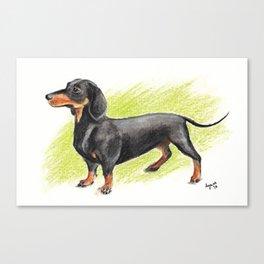 Dachshund (includes rescue donation!) Canvas Print