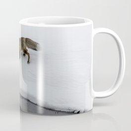 Carol M. Highsmith - Hunting Fox Coffee Mug