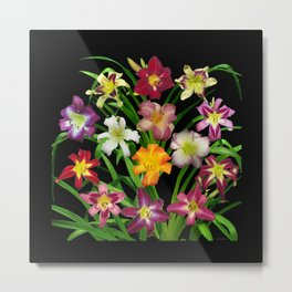 Display of daylilies II on blck Metal Print