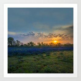 Daybreak In The Land Of Bluebonnets Art Print