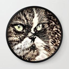 Painted angry looking persian cat head Wall Clock