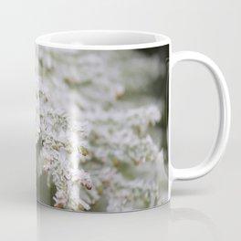 Frozen thuja Coffee Mug