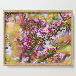 Crabapple Blossoms 7 Serving Tray