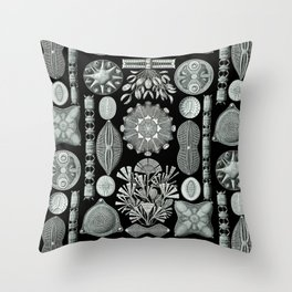 Ernst Haeckel - Scientific Illustration - Diatomea Throw Pillow