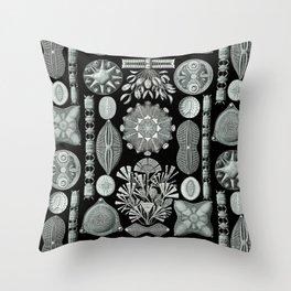 Ernst Haeckel - Scientific Illustration - Diatomea Throw Pillow