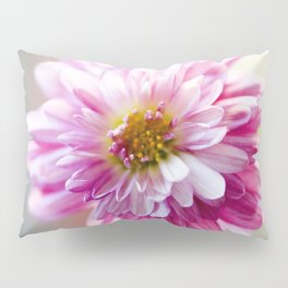 Padre Cerise Belgian Mum Alternate Focus Pillow Sham