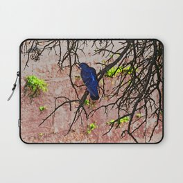 Blue Pigeon Pink Wall Bare Tree Laptop Sleeve