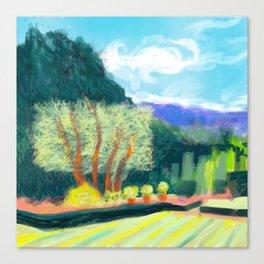 Filoli trees Canvas Print