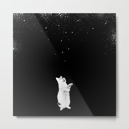 Kitty See Snow Metal Print