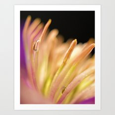 Flowers in the rain Art Print