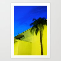 The Dish and the Palm Art Print