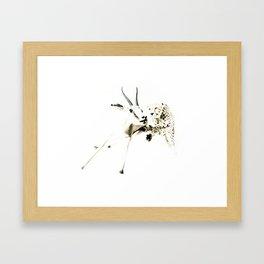 animal#02 Framed Art Print