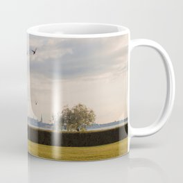 HyperReality Shift. Starling Flyover. Coffee Mug
