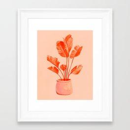 Coral Banana Plant Framed Art Print