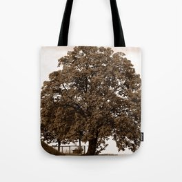 Majestic Tree - Sepia Tote Bag