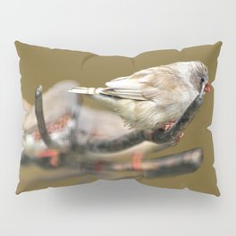 Waxbills Tropical Exotic Little Birds Perching Pillow Sham
