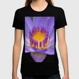 My Soul Dressed in Silence T-shirt