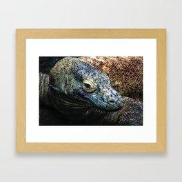 Komodo dragon portrait photograph Framed Art Print