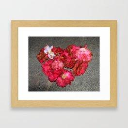 Camelia - Heart Framed Art Print