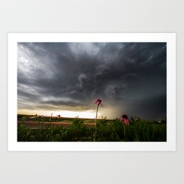 Stay Strong - Flowers Brace for Incoming Storm in Kansas Art Print