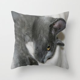Close Up Portrait Of A Relaxed Grey Cat  Throw Pillow