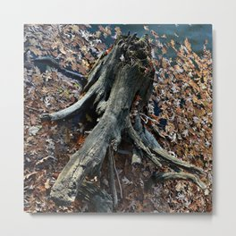 Fossilized Metal Print