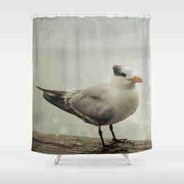 Bird on Pier Shower Curtain
