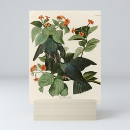 White-crowned Pigeon - John James Audubon's Birds of America Print Mini Art Print