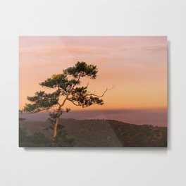 Lone Tree at Dusk Metal Print