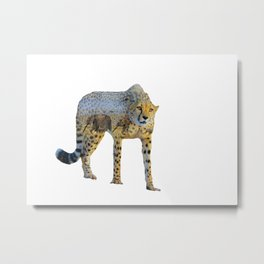 Cheetah Double Exposure Metal Print