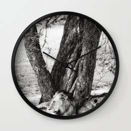 African Safari Lion Wall Clock