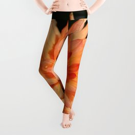 A Radiant Beauty Leggings