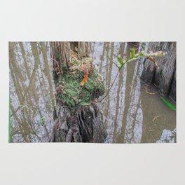 The  Swamp Fairy's Home Rug