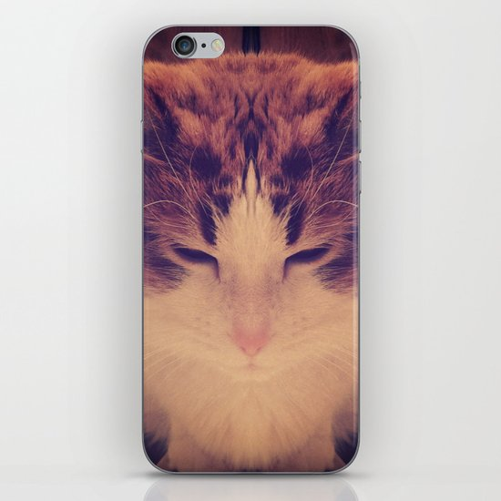 Symmetrical Feline iPhone & iPod Skin