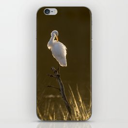Golden Light Great Egret iPhone Skin
