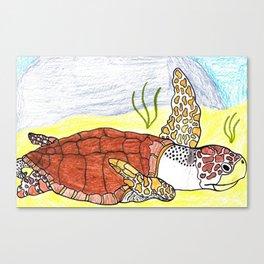 Olive Ridley Sea Turtle Canvas Print