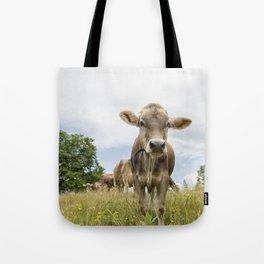 Brown Swiss Heifer Tote Bag